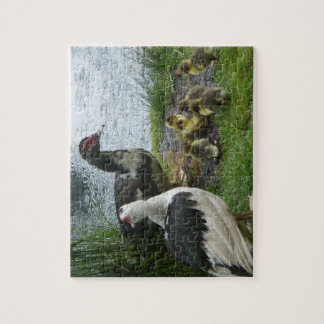 Muscovy Duck Family Puzzle