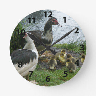 Muscovy Ducks And Ducklings Wall Clock