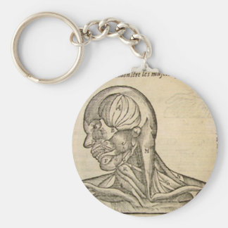 Musculature of the Head and Neck Key Chain
