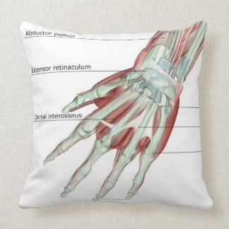 Musculoskeleton of the Hand Pillow
