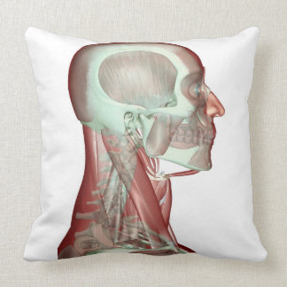 Musculoskeleton of the Head and Neck 2 Throw Pillows