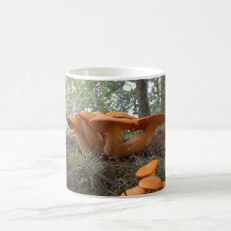 Mushroom 13 Mug