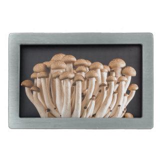 mushroom belt buckle
