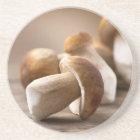 Mushroom Boletus Over Wooden Background. Autumn Coaster