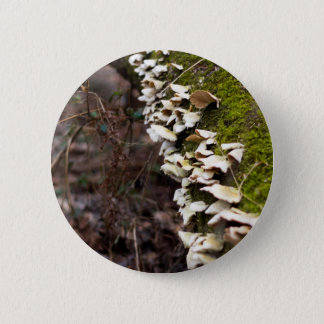mushroom_downed tree_moss_winter 2 inch round button