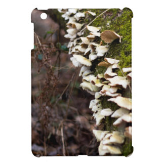 mushroom_downed tree_moss_winter cover for the iPad mini