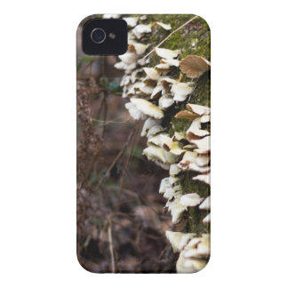 mushroom_downed tree_moss_winter iPhone 4 case