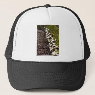 mushroom_downed tree_moss_winter trucker hat