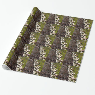 mushroom_downed tree_moss_winter wrapping paper