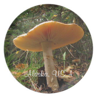 Mushroom Giant; Alaska Souvenir Dinner Plates