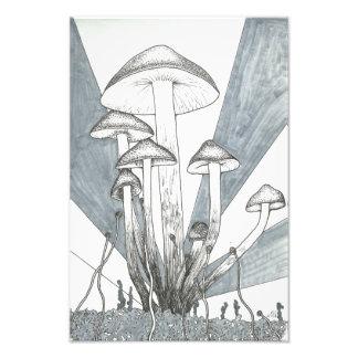Mushroom Inking Photo Print