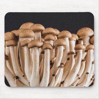 mushroom mouse pad