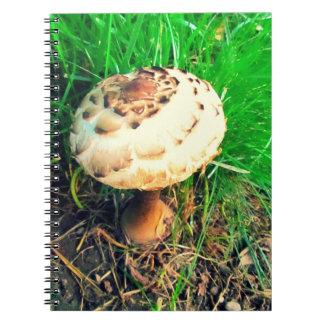 Mushroom Notebook