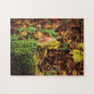 Mushroom on a Treestump Jigsaw Puzzle
