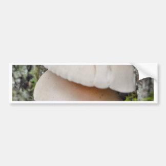 Mushroom Pair Bumper Sticker