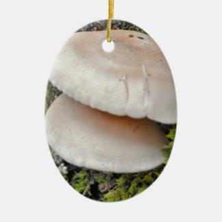 Mushroom Pair Ceramic Ornament