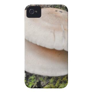 Mushroom Pair iPhone 4 Case-Mate Case