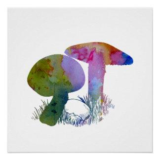 Mushroom Perfect Poster