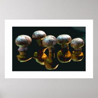 Mushrooms #2-Poster Poster