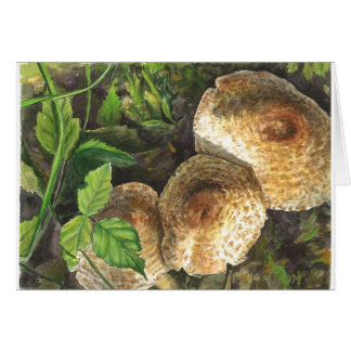 Mushrooms always attractive to the eyes of onlooke card