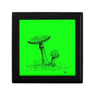 Mushrooms and Toadstools art. Gift Box