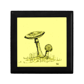 Mushrooms and Toadstools art. Gift Box