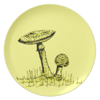 Mushrooms and Toadstools art. Plate
