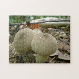 Mushrooms In The Woods Photo Puzzles