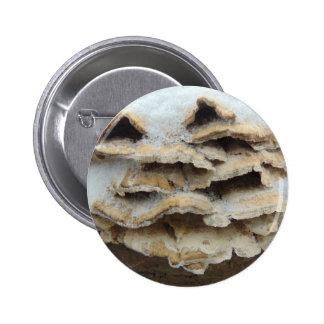 Mushrooms In Winter 2 Inch Round Button