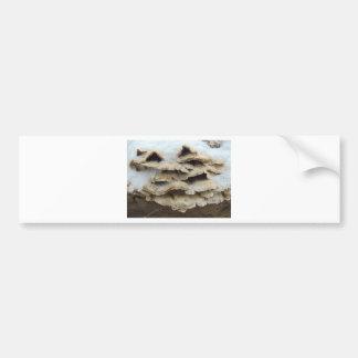 Mushrooms In Winter Bumper Sticker