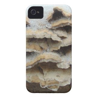 Mushrooms In Winter Case-Mate iPhone 4 Cases