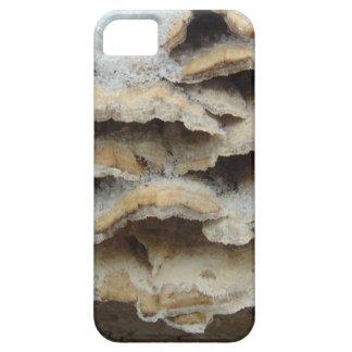 Mushrooms In Winter iPhone 5 Cover