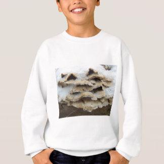 Mushrooms In Winter Sweatshirt