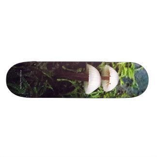 Mushrooms Skate Board Deck