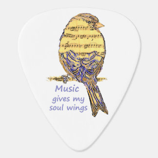Music Gives my Soul Wings Music Note Bird Inspire Guitar Pick