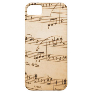 Music Notes iPhone 5 Case