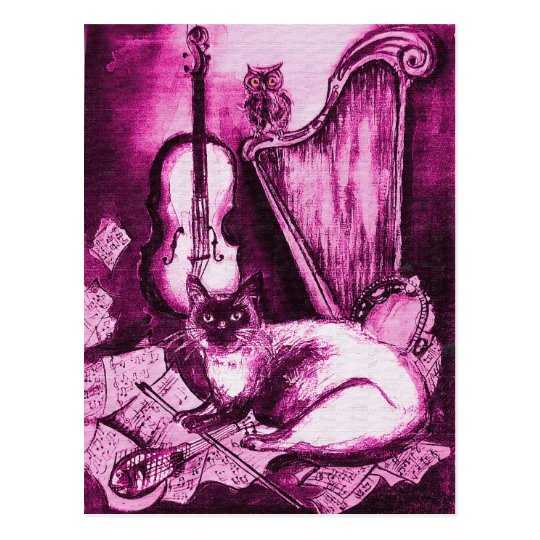 MUSICAL CAT AND OWL ,Pink Violet and White Postcard