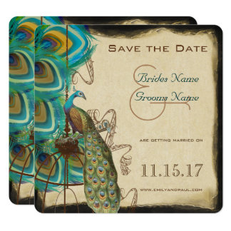 Musical Peacock Bird Cage Feather Save the Date Card