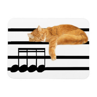 Musical tabby kitty cat magnet