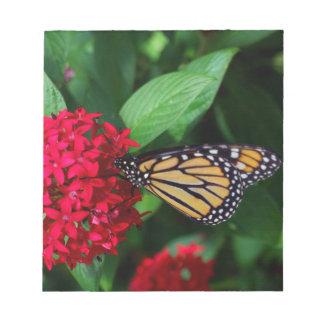 Musing Monarch Notepad