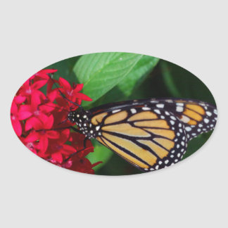 Musing Monarch Oval Sticker
