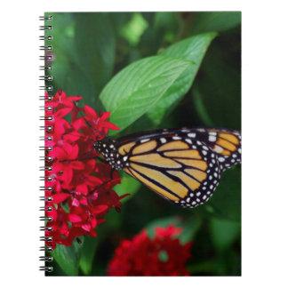 Musing Monarch Spiral Notebooks