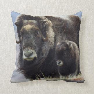 Musk Ox with Calf Throw Pillow
