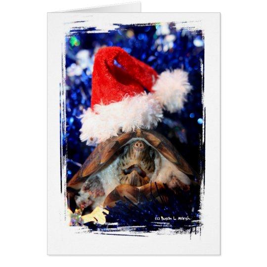 Musk Turtle Wearing Santa Hat Mouth Open Card