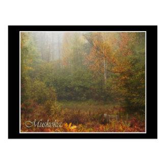 Muskoka Autumn Postcard