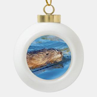 Muskrat at Vassar Farms Ecological Preserve Ceramic Ball Christmas Ornament