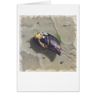 MUSSEL BEACH Card