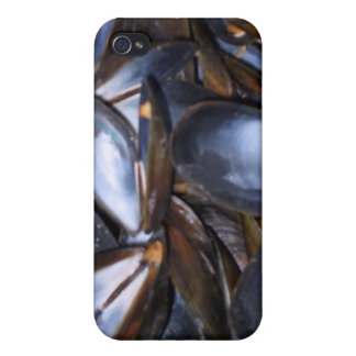 Mussel Shells iPhone 4/4S Case