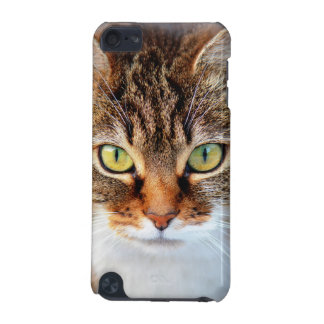 Must Love Cats iPod Touch (5th Generation) Cover