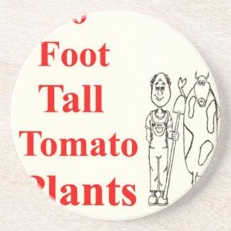 Must Read Best Vegetable Gardening Bible Raised Coaster